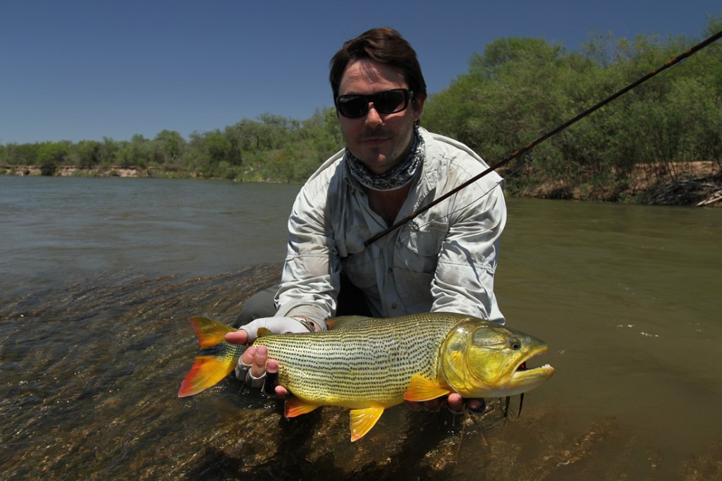 Dorado fishing argentina big game argentina hunting for Fishing in argentina
